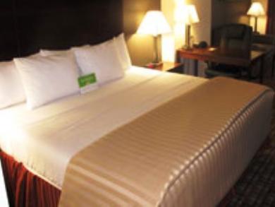 La Quinta Inn And Suites Jfk Airport