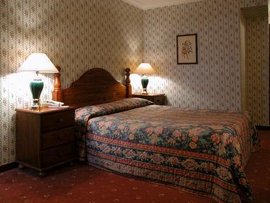 Guestroom - Hampstead Britannia Hotel