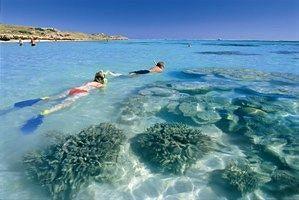 - Ningaloo Reef Resort