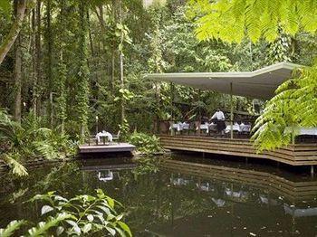- Daintree Eco Lodge & Spa