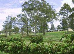 - Tuscany Wine Estate Resort