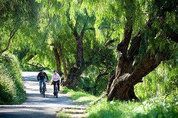 - Amora Riverwalk Melbourne
